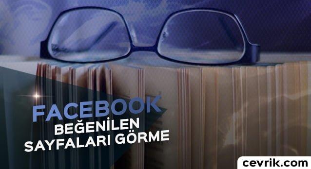 Facebook'ta Beğenilen Sayfalar 2017